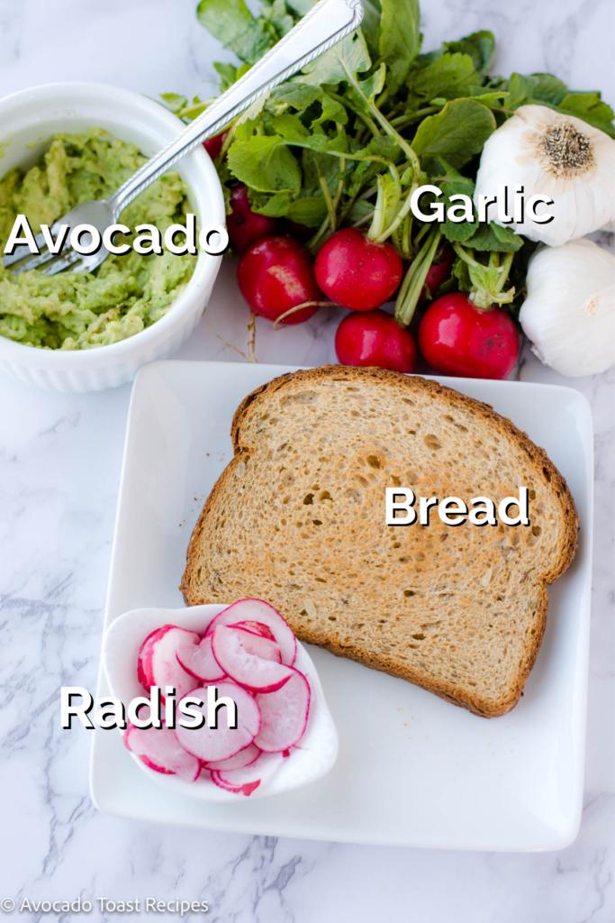 Avocado toast with radish ingredients